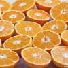 Menüdessert - erfrischendes Clementinenmousse mit einem Hauch Aperol