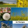 Kanton Thurgau - herrliche Aussichten