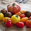 Buntes Sommervergnügen - Tomatentarte