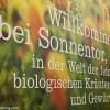 Besuch bei Sonnentor in Niederösterreich - Teil 1